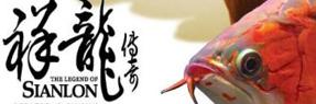 神木水族批发市场|神木水族馆|神木龙鱼