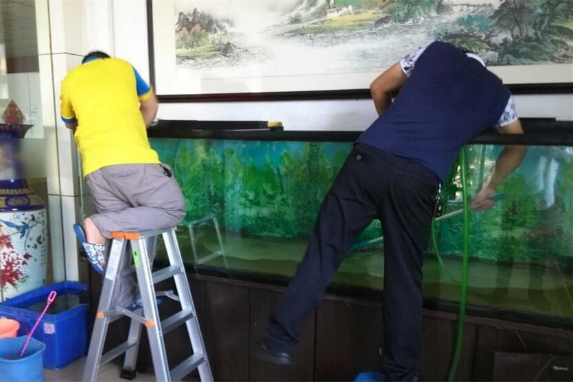 神木上门鱼缸清洗维护服务